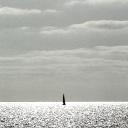 © Nicolas Carras - TAV 165